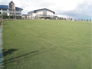 環境-八郎潟中学校グラウンド改良工事(施工後)